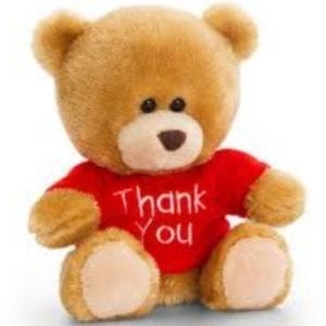 thank you teddy bear