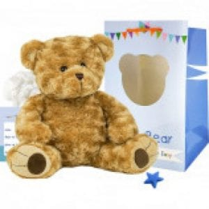 build your own bear brown
