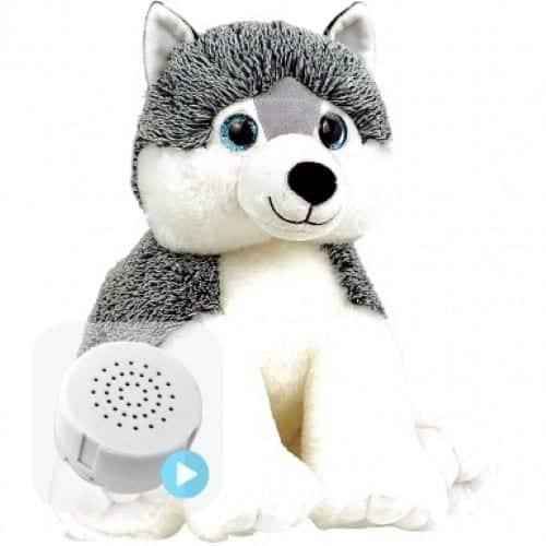 husky voice recording teddy