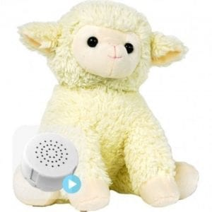 lamb voice recording teddy