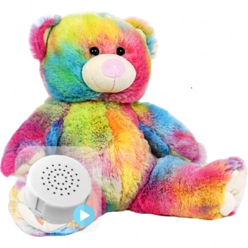 rainbow voice recording teddy bear
