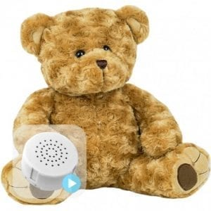 voice recording teddy bear