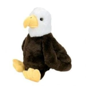 eagle voice message teddy