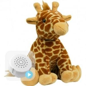 giraffe voice recording teddy