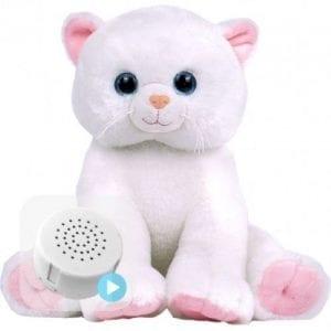 marshmallow voice recording cat