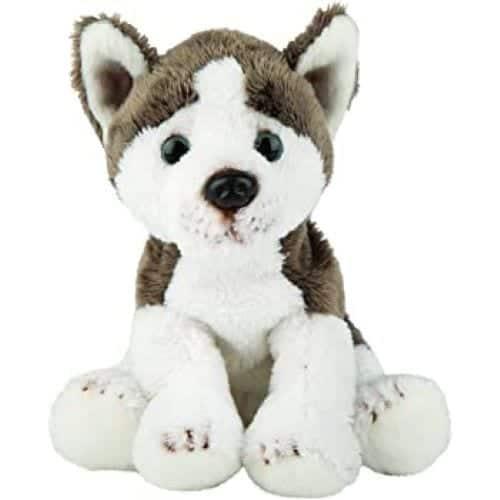 mini husky