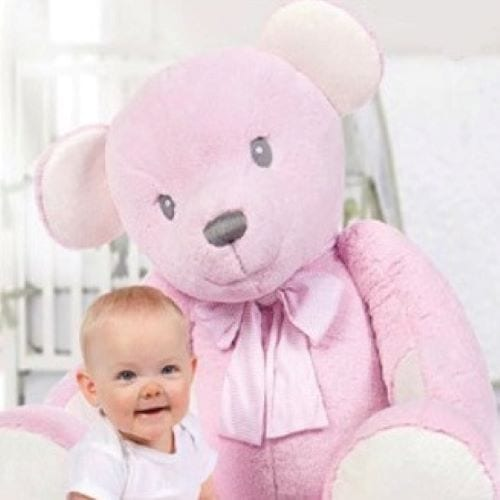 Hug a Boo Teddy Bear Large Pink Teddy Bear