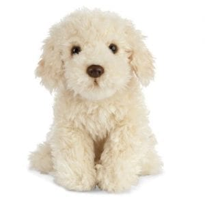 personalised teddy gift labradoodle teddy