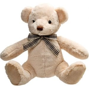 personalised molly teddy bear