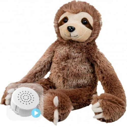 sloth voice message teddy