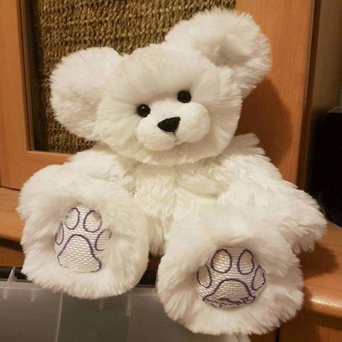 personalised polar ice teddy