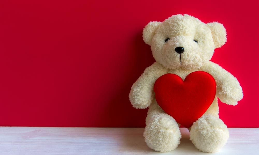 Valentines Teddy Bear How to Send a Valentine with a Personalised Teddy This Year Blog Image
