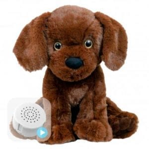 voice message labrador