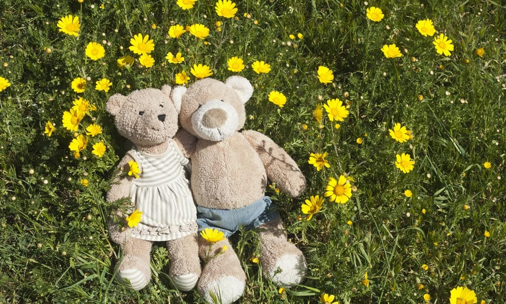 Personalised Bears Make Great Spring Time Gifts Blog Image