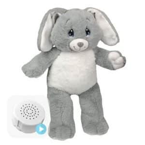 voice message rabbit teddy
